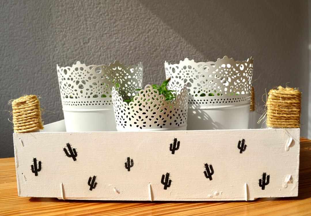 Mini huerto hierbas aromáticas con caja de frutas